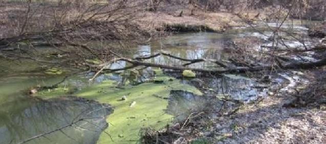 загрязнение малых рек